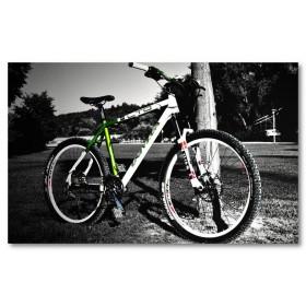 Αφίσα (μαύρο, λευκό, άσπρο, ποδήλατο)
